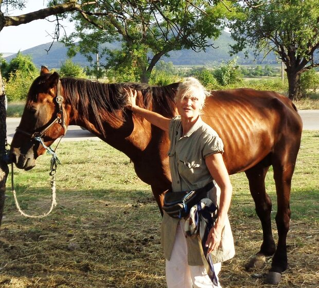 How a British writer ended up helping animals in Sliven