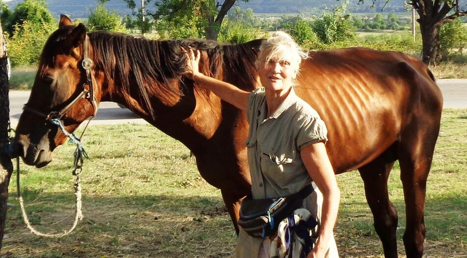 With a rescued horse